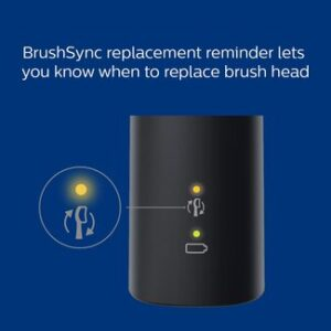 Brush Sync - Philips Sonicare Electric Toothbrush Reviews